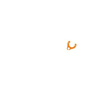 HollandÖse